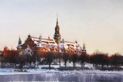 Nordiska museét